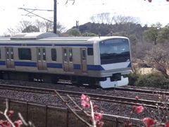 JobanLineTrain20110218.jpg