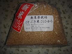 Kotobukimai20101011-2.JPG