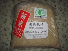 Kotobukimai20101011-3.JPG