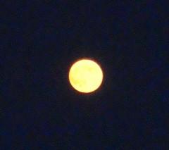 Moon20100824-2.JPG