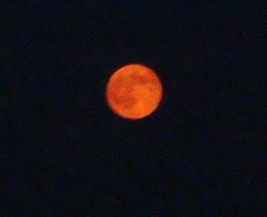 Moon20100825-2.JPG
