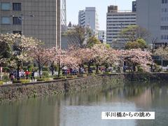 hiwakawabashi2.JPG